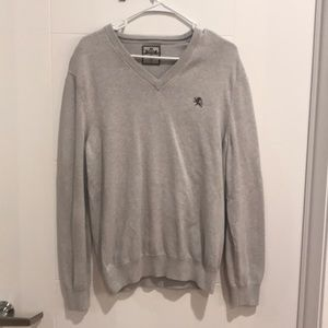Express Light Gray 100% Cotton V-neck Sweater